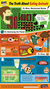 eating-animals-facts-infographic
