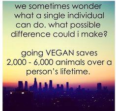 going-vegan