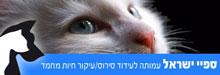 Spay-Israel-220